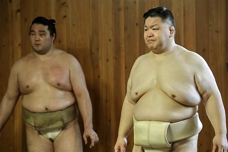 お 相撲 さん ドット コム